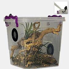 Praying Mantis,Stick Insect,Arboreal Vivarium.Enclosure (Twin Vented) Deluxe