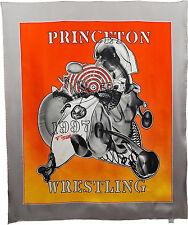 Frank Stella   Princeton Wrestling Scarf - Chiffon 1998