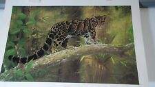 CHARLES FRACE WILDLIFE CLOUDED LEOPARD DOUBLE SIGNED PRINT