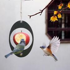 Hummingbird Fruit Bird Feeder Outdoor Hanging Bird Feeder Metal Garden Yard Us