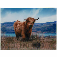 Highland Cow Glass Chopping Cutting Board Food Kitchen Utensil Worktop Saver