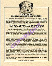 Rules In An Australian Shepherd's House