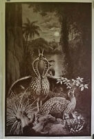 Wilfried Satty | Enigma  - Original 1970 Psychedelic Serigraph Print