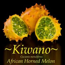 New listing ~Kiwano~ Cucumis metuliferus African Horned Melon Cucumber Non Gmo 20+ Seeds