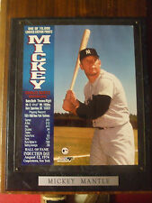 Mickey Mantle Hall of Fame Induction Plaque LIMITED EDITION 1 OF 10,000 VGC L@@K