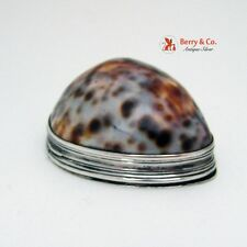 Irish Snuff Box Cowrie Shell John Egan 1800 Sterling Silver PHR