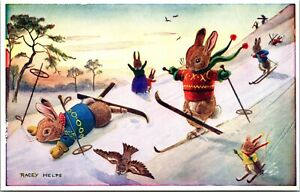 Racey Helps Postcard Dressed Animals Fun on Skis Skiing in the Snow~3066