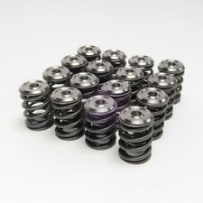 SKUNK2 Alpha Valve Springs & Ti Retainers Kit For HONDA ACURA B-SERIES VTEC