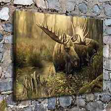 Moose 24