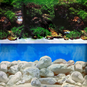 Aquarium Background Double-Sided Repeating Stone Seascape Plants Fresh Fish Tank