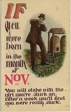 """""""If You Were Born In The Month Of November..."""" Humorous Postcard"""
