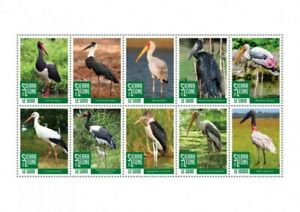 Sierra Leone - 2020 Storks, Yellow-billed, Painted - 10 Stamp Sheet - SRL200422a