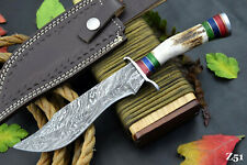 Custom Damascus Steel Hunting Knife Handmade With Stag Horn Handle (Z51)