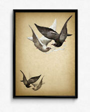 Multi-Colour Artist Birds Art Prints