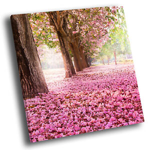 Square Scenic Canvas Wall Art Photo Picture Print Cherry Blossom Trees Pink Cool