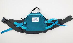 Vintage Gregory Teal Padded Lumbar Adjustable Waist Pack Hiking Camping Bag Rare