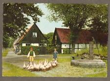 Skåne.  1960's.  Gasflock.  vintage postcard. Sweden.    n.139