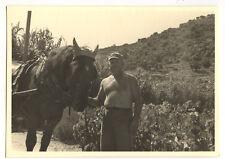 Homme avec cheval attelé - photo ancienne amateur an. 1950