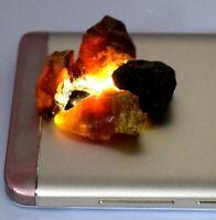 100% Natural Ukraine 47.30 Ct Baltic Amber Gemstone Rough Lot Certified X6404