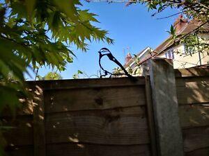 Blue Tit Garden bird Silhouette Metal fence blue tit