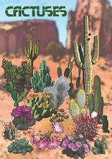PLAKAT RELAKSUJĄCY Kaktusy - NOWY  plakat A2 (42 x 59.4 cm)