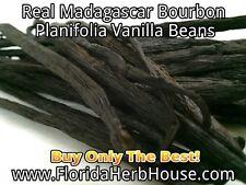 Buy Planifolia Vanilla Beans - Our Best Madagascar Bourbon - 1 oz (28g)
