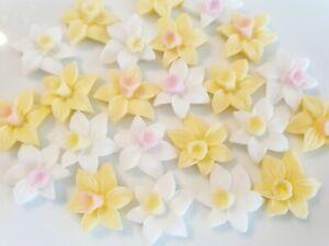 24 Edible Sugar Daffodils Spring Flowers Birthday Wedding Cake Cupcake Toppers