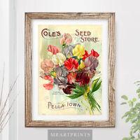 VINTAGE FLOWERS Art Print Poster Victorian Floral Sweet Peas Gardening Bouquet