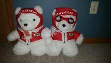 Vintage 1987 Dayton Hudson plush Santa bear with goggles Aviator and a friend!!!