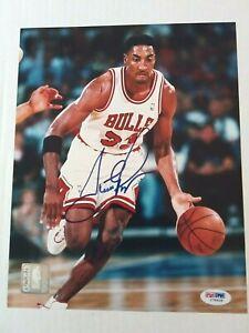 Scottie Pippen NBA HOF Signed Chicago Bulls  8 by 10 Color Photo  PSA/DNA  COA