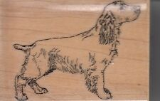 """field spaniel stamp cab.Wood Mounted Rubber Stamp 2x 3"""" Free Shipping"""