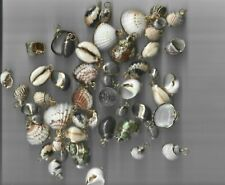100 PIECES OF COLD TRIMMED SEA SHELLS READY FOR NECKLACE OR EARRINGS