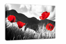 RED POPPY CANVAS PICTURE POPPIES FLORAL PRINT framd A2