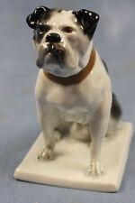 englische Bulldogge Figur Fraureuth Porzellanfigur hund porzellan rar