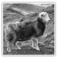 2 x Square Stickers 10 cm - Herdwick Sheep Mountain  #35321