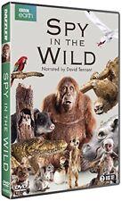 SPY IN THE WILD (2017): BBC Nature Documentary TV Season Series - NEW  DVD UK