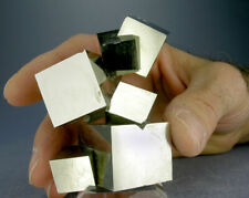 BRIGHT 8-CUBE GOLDEN PYRITE CRYSTALS w a 3.0 CM. CUBE, 3-D VIDEO, SPAIN
