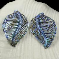Multicolor Paua Abalone Shell Iridescent Carved Abstract Leaf Earring Pair 2.40g