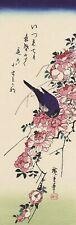"Palaeornis Derbianus John Gould Mounted Vintage Birds Art Print 10/""x8/"""