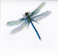 Dragonfly - Hand made magnetic bookmark