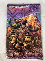 Teenage Mutant Ninja Turtles Volume 1, Number 18, Feb 1989 Eastman And Laird