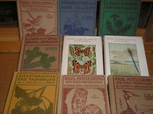 Farfalle , Fiori ,Insetti , Uccelli, Piante , 9 libri , oltre 700 tavole ,1923