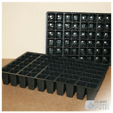 Seed Tray Insert 60 (Quantities 5 to 20)