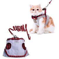 Cat Bowknot Decor Vest Harness Traction Kit Pet Outlet Leash Lead Clothing AU p