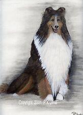 Dog Art,Pencil&Ink ,Rough Collie Prints, by P K Ufnal