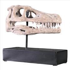 Velociraptor Dinosaur Skull Replica Fossil Statue Predator on Museum Mount