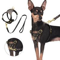 Ledergeschirr für Hunde kleine Hunde No pull Hundeweste mit Hundeleine Braun