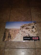 FLIP SKATEBOARDS VINTAGE BOB BURNQUIST GRAND CANYON LAMINATED SKATEBOARD POSTER