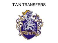 TWN Triumph Germany Tank Transfers Decals DTWN8
