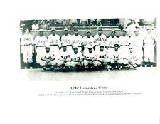 1940 HOMESTEAD GRAYS  8X10 TEAM PHOTO  BASEBALL HOF